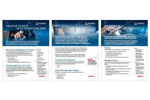 flyer-designs-solutions-checkpoint-consulting